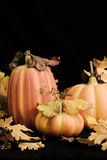 Fall Pumpkins - vertical. Still life of decorative fall pumpkins and leaves on black background Stock Photo