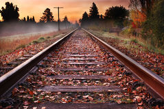 Fall Railroad. An early morning fall photo of railroad tracks no longer in service Royalty Free Stock Photography
