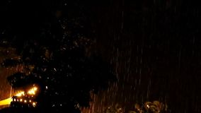 The fall of the rain at night. The fall of rain at night gives beauty with the light bulbs and the movement of trees stock video footage