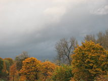 Fall rain. Fall trees rain dark sky landscape clouds Royalty Free Stock Images