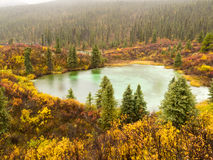 Fall rain on wilderness lake, Yukon T., Canada Royalty Free Stock Images