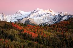 Fall red dawn in the Southern Wasatch Mountains. Fall morning dawn in the Southern Wasatch Mountains, Utah, USA Royalty Free Stock Image