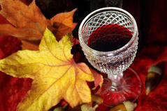 Fall Red Wine Royalty Free Stock Photography