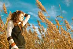 Fall reeds season. Young woman in a fall reeds season on a wind Stock Images