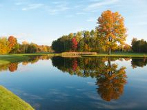 Fall Reflection stock images