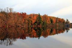 Fall Reflection Royalty Free Stock Photo