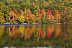 Fall Reflection Stock Photography