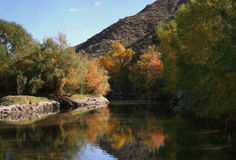 Fall reflection on the Salt River. Reflection of trees in fall colors in the water royalty free stock image
