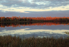 Fall reflections at Moberg Lake Royalty Free Stock Photo