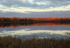 Fall reflections at Moberg Lake Royalty Free Stock Photo