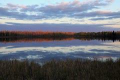 Fall reflections at Moberg Lake Stock Images