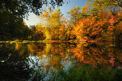 Fall reflections on a river. Fall reflections on the Olentangy River in Delaware County Ohio Stock Photo