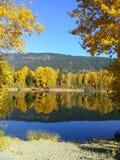 Fall reflections Royalty Free Stock Photo