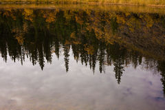 Fall reflections on water surface Stock Photography