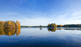 Fall reflections in water. Trees and colorful leaves reflecing on water under blue sky Royalty Free Stock Photography