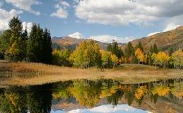 Fall-Reflexionen Stockfoto