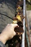 Fall-Reinigung - Blätter in der Gosse Lizenzfreie Stockfotografie