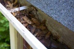 Fall-Reinigung - Blätter in der Gosse Stockbilder