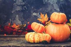 Fall harvest of pumpkins Stock Photo