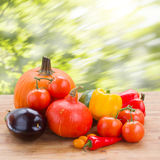 Fall ripe of vegetables on table Stock Photography