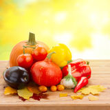 Fall ripe of vegetables on table Stock Photos