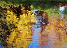 Fall Ripples B. Painting of pond and ripples reflecting tress and bushes with fall colors Stock Photos