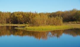 Fall River, отраженный в деревьях осени воды Стоковое фото RF