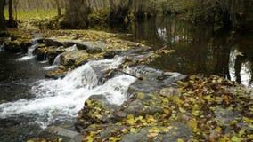 Fall River Стоковые Изображения