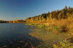 Fall River Fotos de archivo libres de regalías