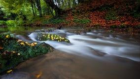 Fall River Royaltyfri Foto
