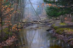 Fall River 2 Imagens de Stock
