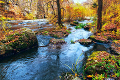 Fall river in canyon Royalty Free Stock Images