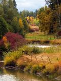 Fall and the River Corridor Royalty Free Stock Images