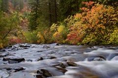Fall-River Farben Stockbilder