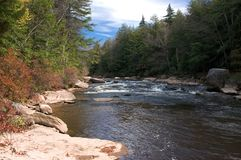 Fall River Scene Royalty Free Stock Image