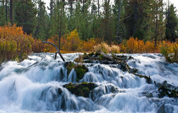 Fall River Waterfall in Autumn. Oregon waterfall in autumn with bright colors and soft water stock photo