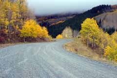 The fall road. And fall foliage Royalty Free Stock Photography