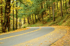 Fall Road. Beautiful colors in the fall stock photos