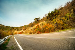 Fall road Royalty Free Stock Image