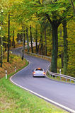 Fall road in forest Royalty Free Stock Image