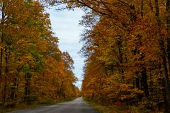 Fall road in Pictured Rocks National Lakeshore, Munising, MI, US. Gorgeous display of fall colors, leaves, red, orange, green and yellow trees with both side of Stock Image