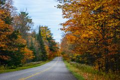 Fall road in Pictured Rocks National Lakeshore, Munising, MI, US. Gorgeous display of fall colors, leaves, red, orange, green and yellow trees with both side of Royalty Free Stock Photography