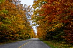 Fall road in Pictured Rocks National Lakeshore, Munising, MI, US. Gorgeous display of fall colors, leaves, red, orange, green and yellow trees with both side of Stock Photo