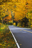 Fall road from road edge Royalty Free Stock Photos
