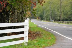 Fall road. A road surrounded buy colorful tress Stock Photography