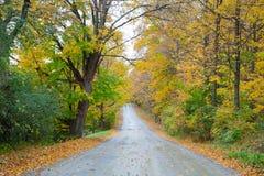 Fall Road Stock Photos