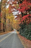 Fall Roads Royalty Free Stock Photography