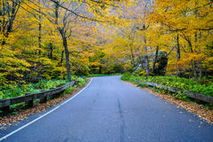 Fall roadtrip Stock Photo