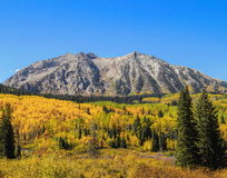 fall rockies Arkivbild
