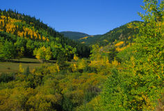 Fall in the Rockies. A colorful scenic in the rockies in fall Stock Photo